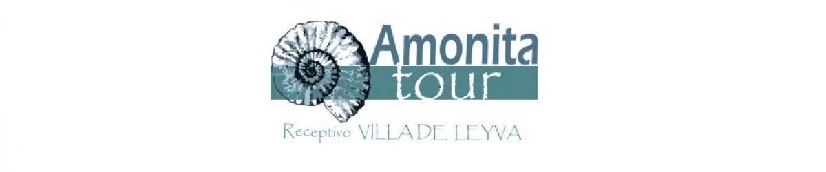 Amonita Tour Ltda