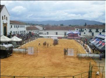 festival de caballos