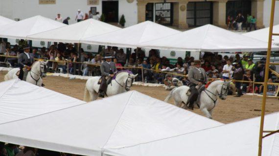 festival del caballo_ vino_2