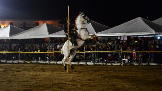 festival del caballo_ vino_4