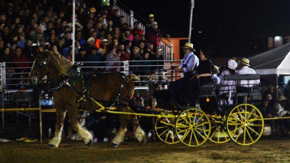 festival del caballo_ vino_5