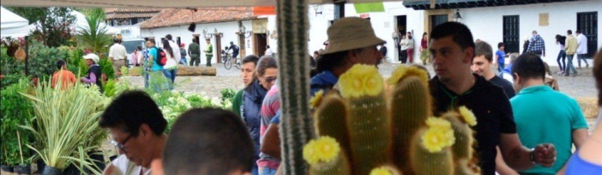 Festival Nacional del Árbol