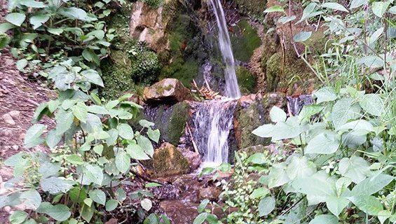 Cascada Monticelo2-floresta.com