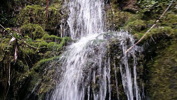 Cascada Monticelo,floresta.com01