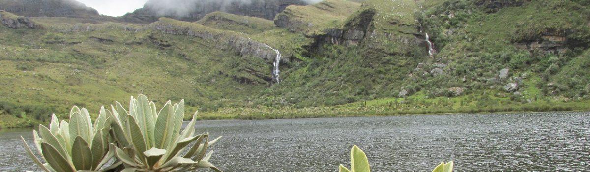 Laguna Tres Chorros