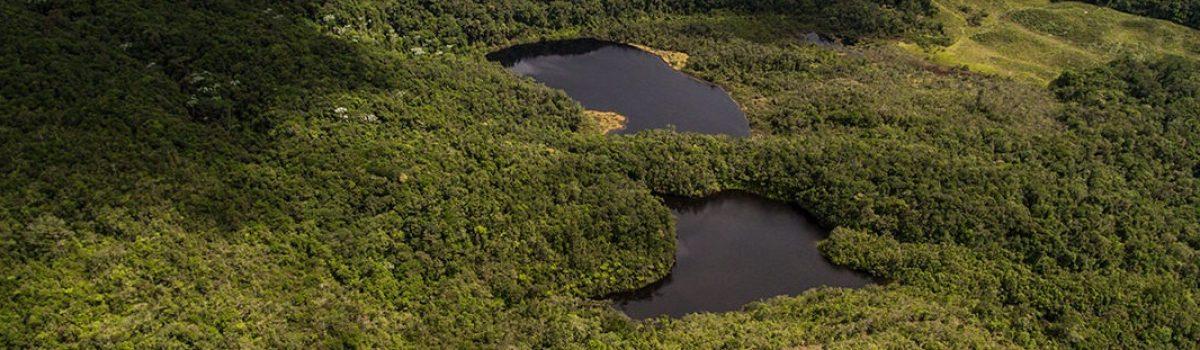 Laguna del Cerro