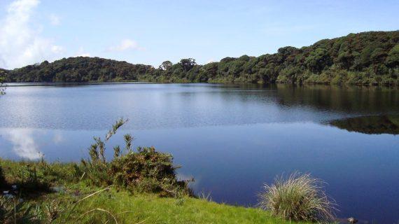 Laguna Calderona Jaime Avila, 2008