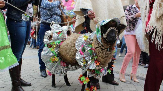 Festival Ruana