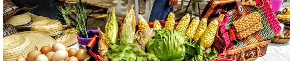 Más de 15 mil personas disfrutaron del Bazar de la Confianza en Duitama