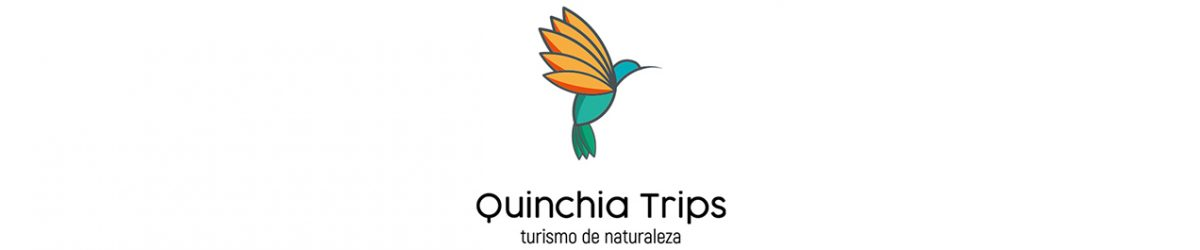 QUINCHIA TRIPS