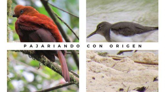 Origen Travel SAS -Portafolio de Servicios_pages-to-jpg-0019