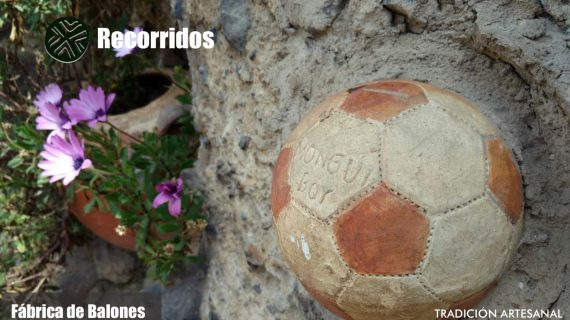 Portafolio de servicios mongui travels_page-0014