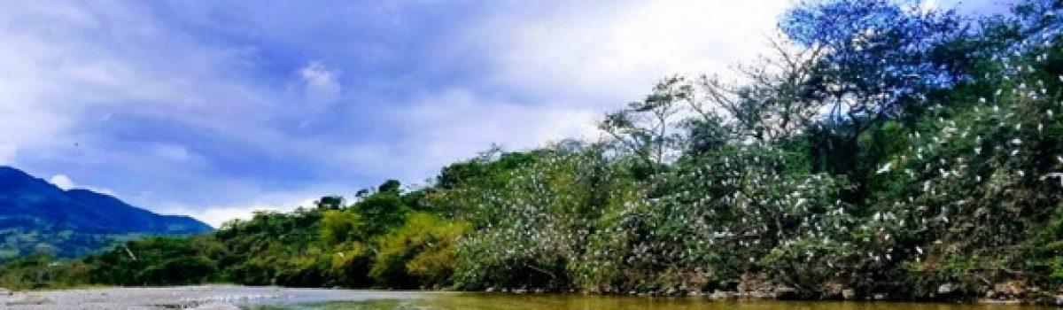 Ruta Provincia de Lengupá